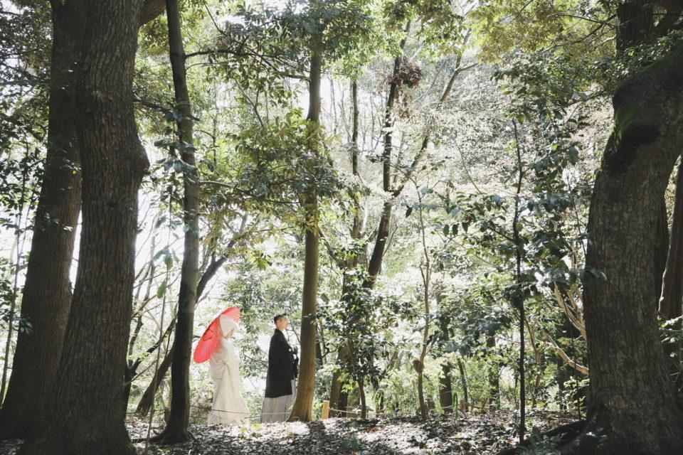下鴨神社 隠れた写真撮影ベストスポット