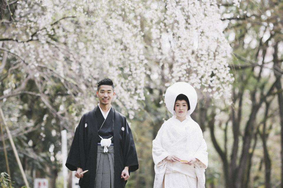 たくや&みさウェディングレポート 咲き誇る満開の桜