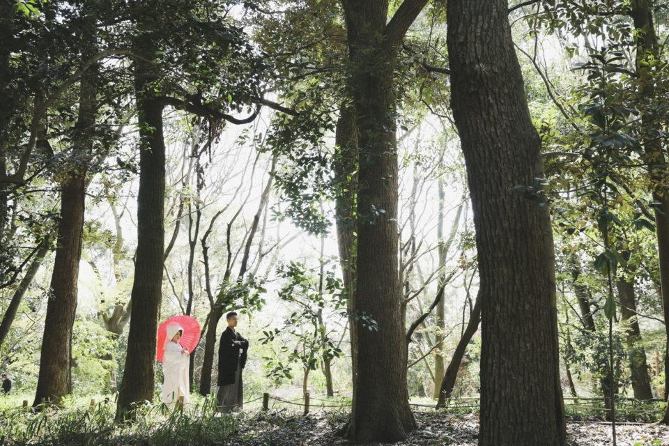 たくや&みさウェディングレポート 新緑の糺の森