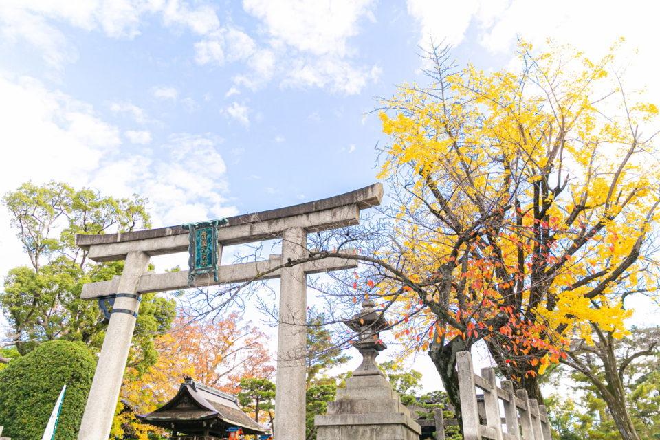 豊国神社結婚式風景