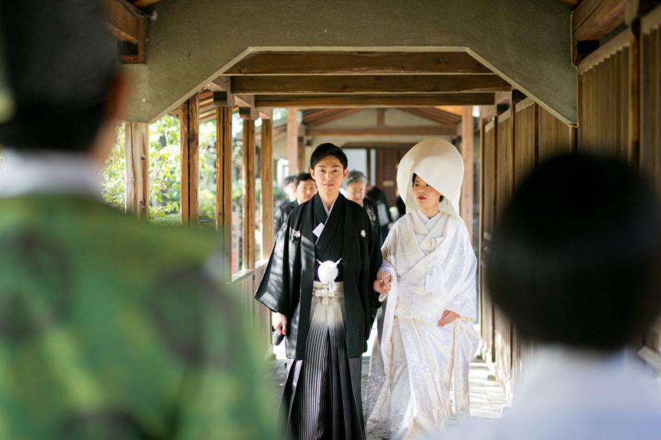 豊国神社結婚式参進